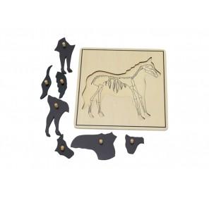 Puzzle cheval avec squelette