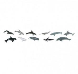 Tube baleines et dauphins
