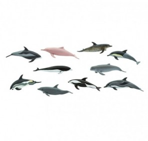 Tube dauphins