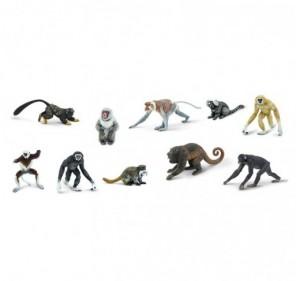 Tube primates