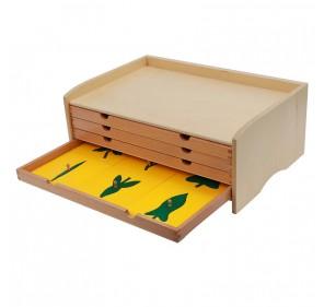 Cabinet de botanique 24 formes