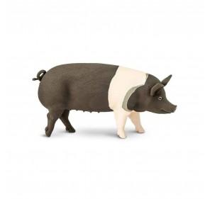 Porc du Hampshire