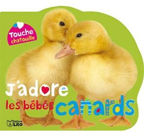 J'adore les bébés canards
